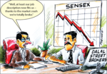 The fall of Sensex