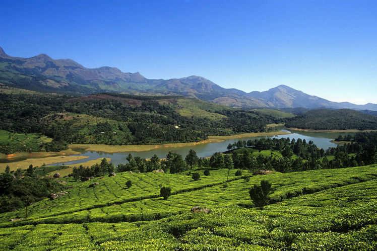 Wonderful Places To Visit Near Munnar