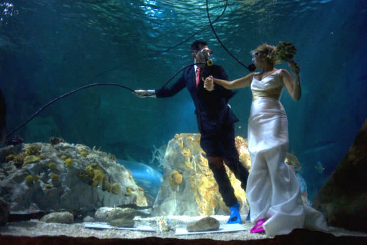 Best Places To Get Married Underwater