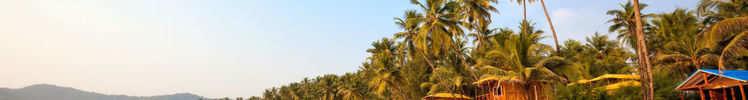 The Best Beaches Of Goa
