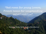 'Red roses for young lovers, french beans for longstanding relationships'