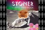 The stoner friend