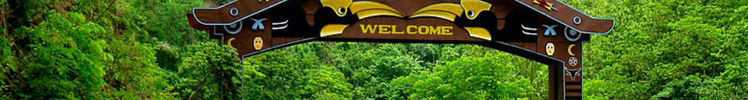 Nagaland is calling and this is what awaits you there