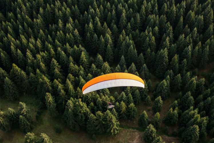 A complete guide to paragliding in Bir-Billing, Himachal Pradesh