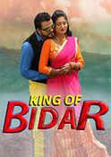 King Of Bidar