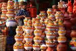Pongal festivity grips Tamil Nadu