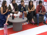 Ex-Contestants in the house