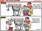 Cow matters