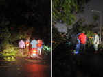 Locals and the tree cutters team come out to clear streets