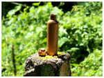 Leak-proof bamboo bottles