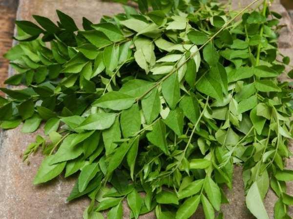 Curry Leaves,nari