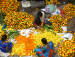 Dadar's Flower Market