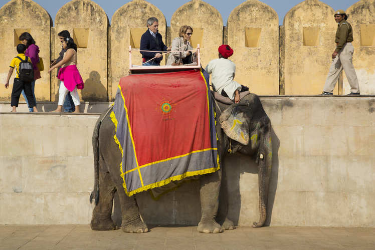 UP: In a first, Elephant Memorial built in memory of elephants that lost their lives to abuse