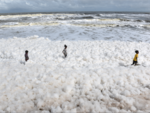 Toxic foam blankets Marina Beach