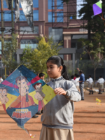 Chhota Bheem on kites