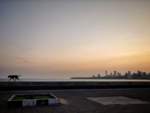 Not a soul on Marine Drive