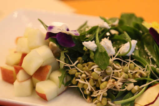 Zad Apple Salad With Winter Greens