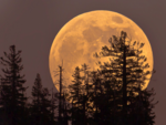 Super Flower Moon 2020: How and when to watch the last supermoon of 2020 from India
