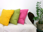 Colourful cushion covers