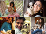 Samantha to Tamannaah, these actresses are beating the quarantine blues in the company of their pets