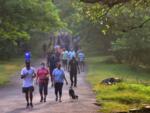 Borivali National Park reopens