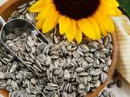 Delicious ways to add sunflower seeds to your diet
