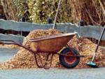 Avoid fresh mulch