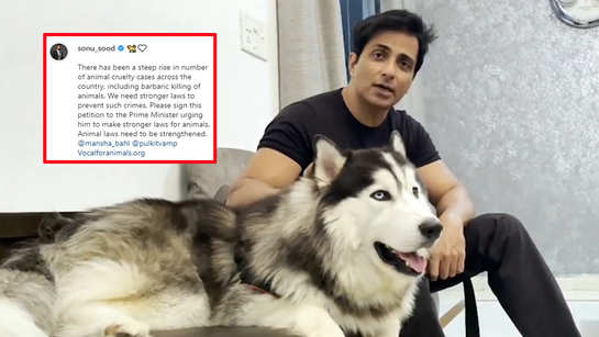 Sonu Sood demands stronger laws to prevent against cruelty: Animal laws need to be strengthened