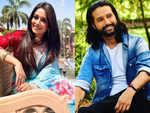 Dipika Kakar to Apurva Agnihotri: Popular celebs who did cameos in TV shows