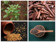 Common kitchen spices that control cholesterol and diabetes