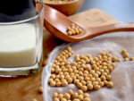 How to choose the right protein?