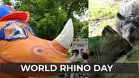 Delhi Zoo celebrates World Rhino Day with fervour
