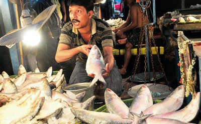Bengal fishing for Hilsa patent