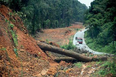Karnataka: Will Shiradi Ghat turn into a concrete jungle?