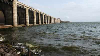 Maha dams twice as full as they were in 2015
