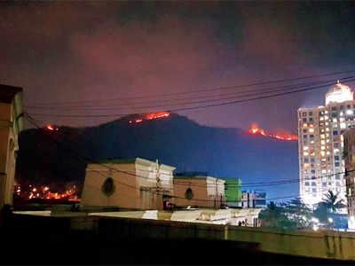 Major fire erupts at national park