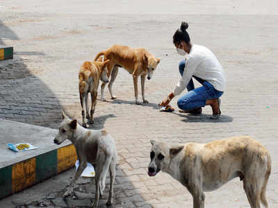 Rajajinagar residents attack twin sisters, mother for feeding stray dogs