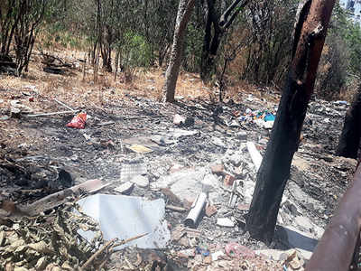 Garbage is being burnt at Kasturi Nagar forest
