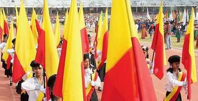 A note on the Kannada flag