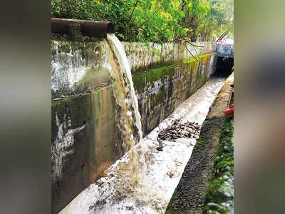 Illegal dumping of slurry 'could lead to flooding'