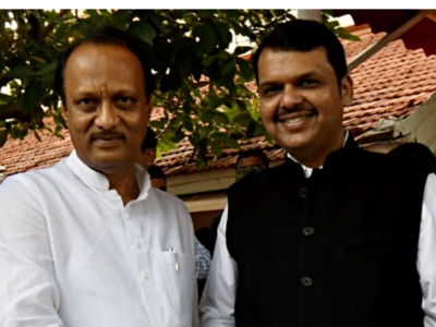 'We discussed weather and rainfall': Ajit Pawar on his meeting with Fadnavis after Maharashtra fiasco