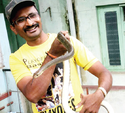 Bengaluru and its cobras are keeping snake rescuers busy this season