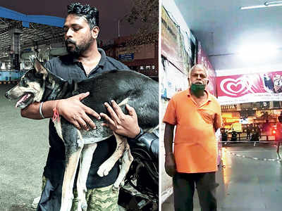 Activists nab man suspected of sexual assault on dog at Nerul station