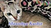Children Marathi Nursery Rhyme 'Mani Maau' - Kids Nursery Rhymes In Marathi