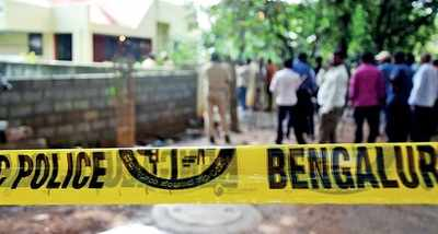 Bengaluru: Crime graph continued to grow this year, but here's the good news: cattle were safer in 2017
