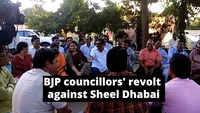 BJP councillors in Jaipur seek Sheel Dhabai's ouster, meet RSS neta