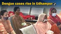 Dengue cases rise in Udhampur
