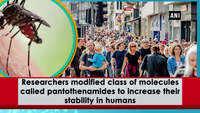 Psoriasis treatment drug can also treat malaria, study reveals