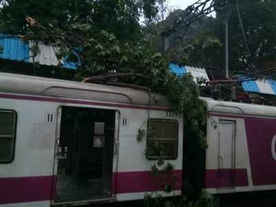 Tree branches fall on stationary local in Mulund, services briefly hit