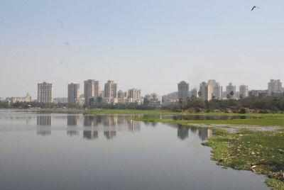 Bodies of brothers who drowned in Powai lake found